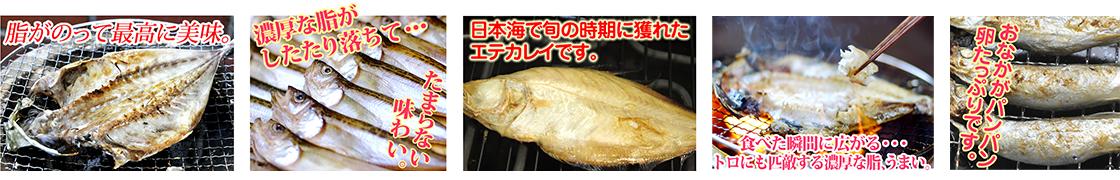 通販サイト商品紹介